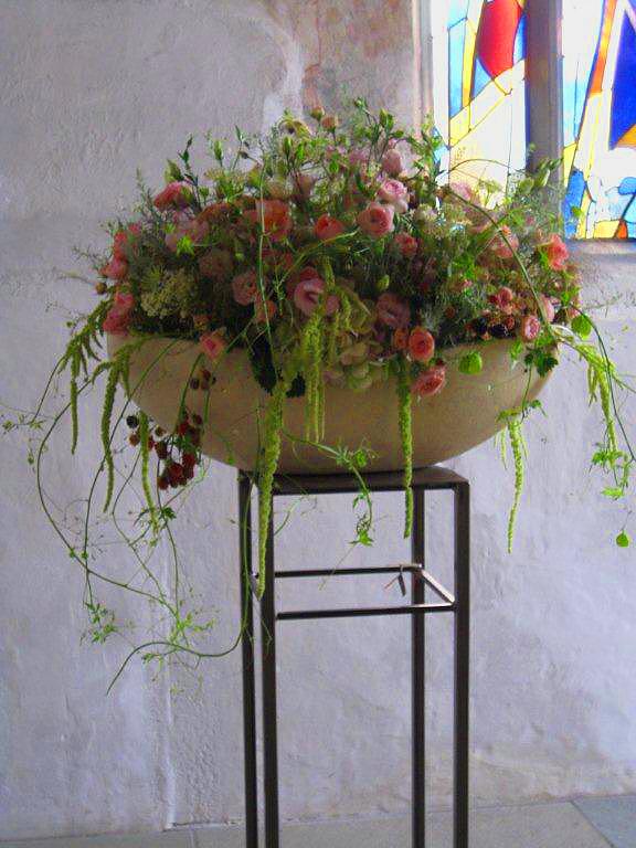 Ginkgo Blumen St. Gallen